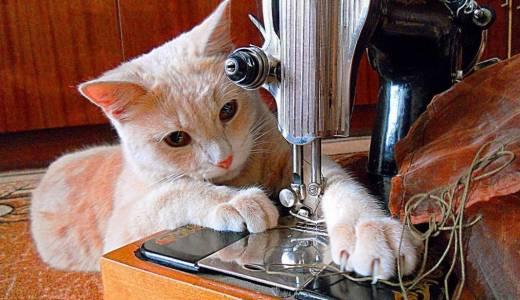 Услуги профессионального мастера по пошиву одежды